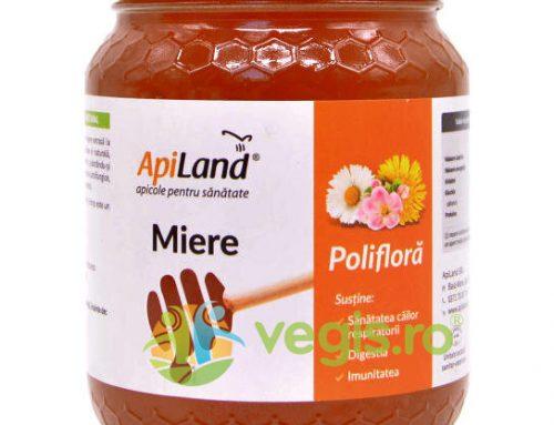 Miere Poliflora Cruda 500gr